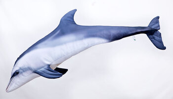 Foto - CUSHION, BOTTLENOSE DOLPHIN, 125 cm