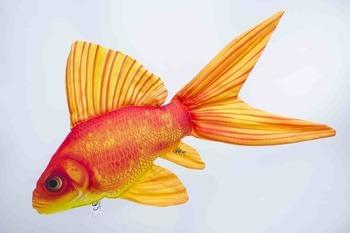 Foto - CUSHION, GOLD FISH, 60 cm